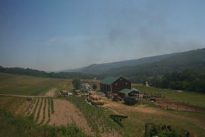 A view from the Western Maryland Scenic Railroad.\