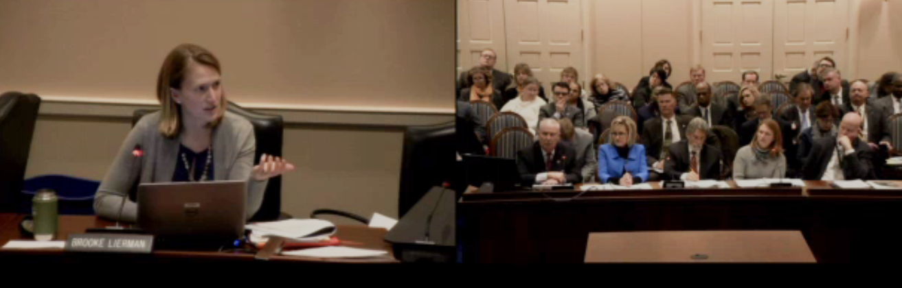 Delegate Lierman at the February 8 hearing on Maryland Historic Trust budget.