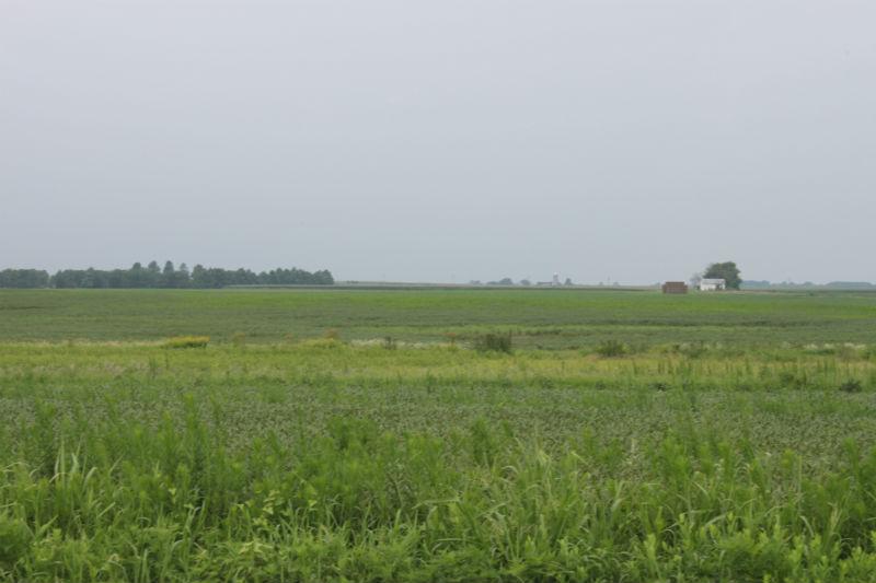 kent-county-landscape