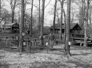 maple-syrup-missouri-state-archives