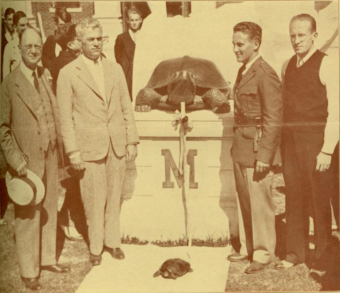 The Testudo statue was unveiled in 1933 by an actual diamondback terrapin. Photo from the UMD Archive.