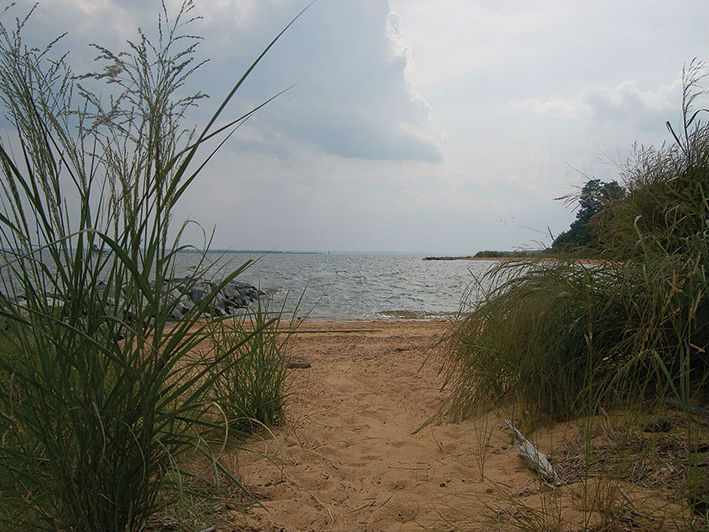 View of beaches at Newtowne Neck State Park, 2014. Photo from Bay Journeys.