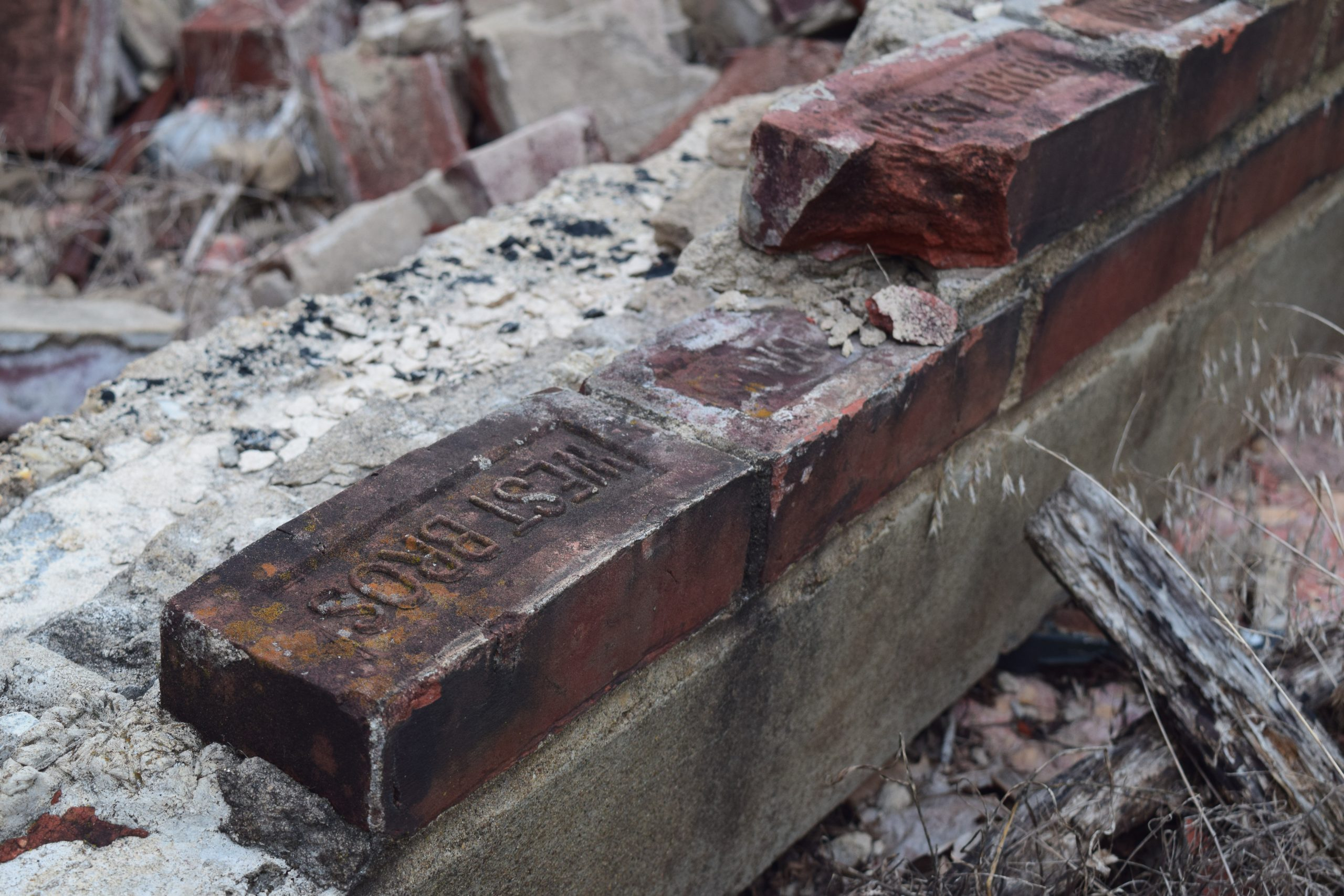 """Bricks from a building at the Glenn Dale Hospital campus. The bricks read """"West Bros."""" The Glenn Dale Tuberculosis Hospital and Sanitarium was founded in 1934, but closed in 1981. It was selected as a Preservation Maryland Six-to-Fix site in 2015."""