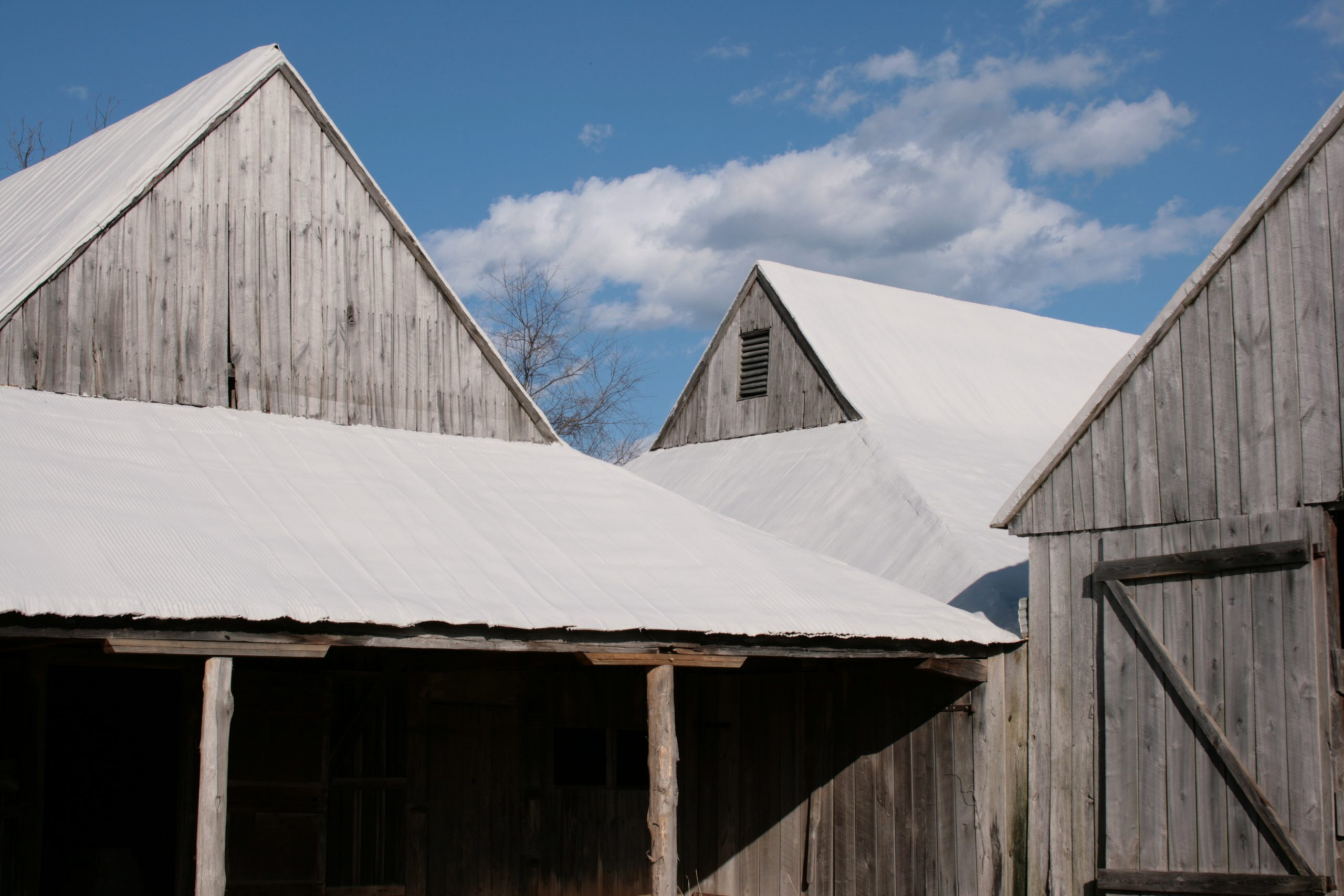 An image of the Bond-Simms Barn. The complex was constructed over 50 years starting sometime between 1835 and 1845.